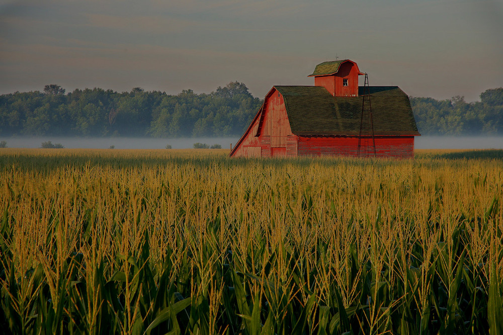 farm and crop insurance Aberdeen NC